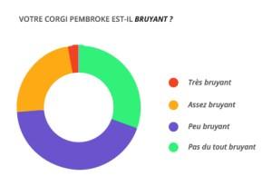 bruyant_corgi_pembroke