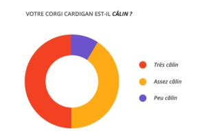 calin_corgi_cardian