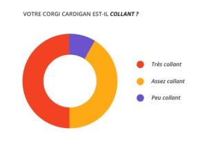 collant_corgi_cardian