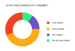 collant_corgi_pembroke