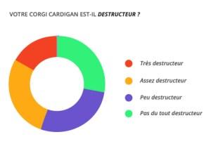 destructeur_corgi_cardian