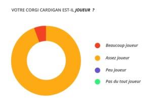 joueur_corgi_cardian
