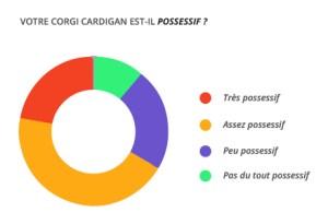 possessif_corgi_cardian