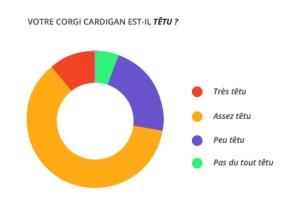 tetu_corgi_cardian