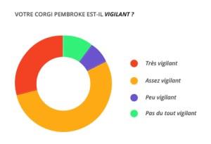 vigilant_corgi_pembroke
