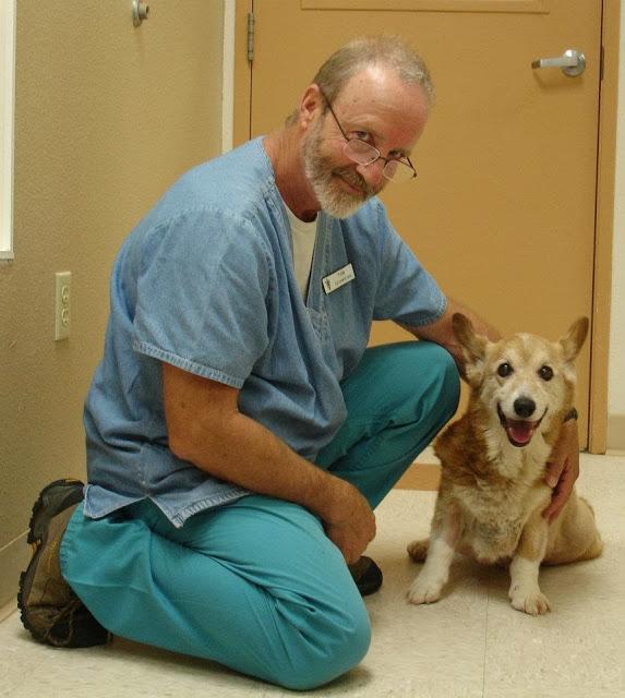 Joey avec le gentil vétérinaire