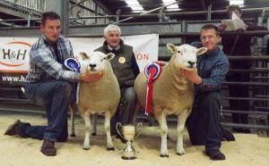 carlisle 2014 judge Dai Morris with Champion and Reserve Courtesy Lleyn Sheep Society