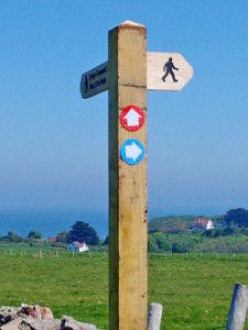 caldey islands paths 3