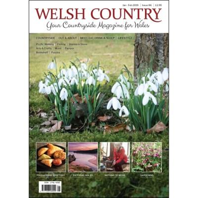 Welsh Country Jan Feb 2019