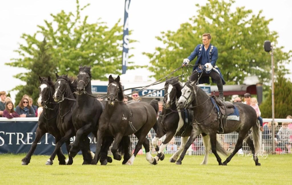 The Royal Welsh Spring Festival Summer Show & Winter Fair