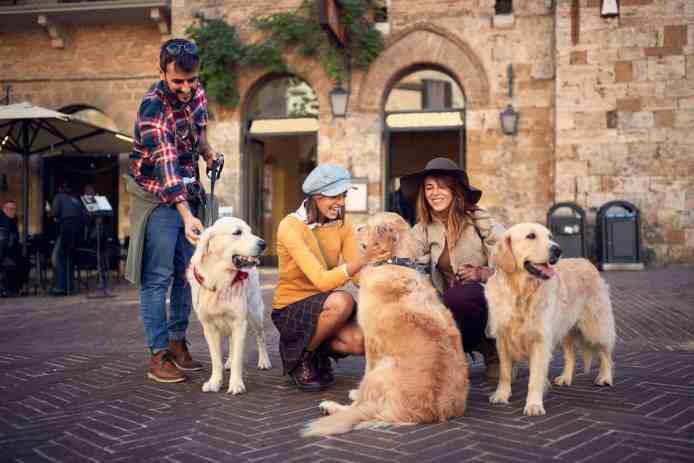 Mit dem Hund in die Toskana