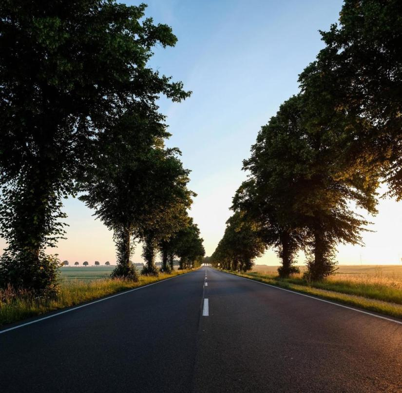 Trees line the B3 near the small town of Pattensen in Lower Saxony