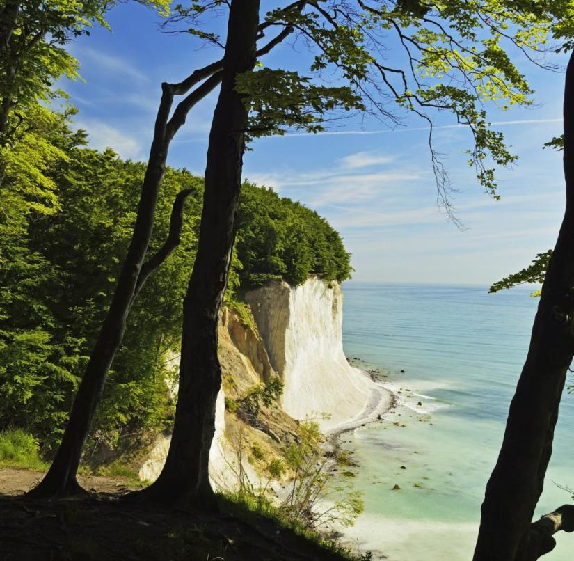 The Jasmund National Park on Rügen is known for its huge beech population and white chalk cliffs.  It has been a UNESCO World Heritage Site since 2011