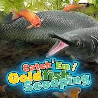 CatchEm Goldfish Scooping - Cover