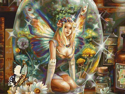 Die Schmetterlingsfee, Rechte bei Schipper