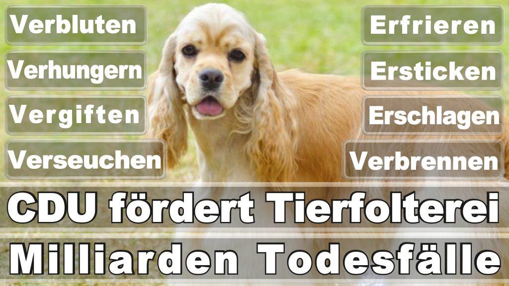 Bundestagswahl 2017 Umfrage Stimmzettel Angela Merkel CDU Tierversuche Tierquälerei Hauptschule Realschule Grundschule Gymnasium (16)