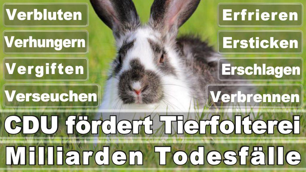 Bundestagswahl 2017 Umfrage Stimmzettel Angela Merkel CDU Tierversuche Tierquälerei Hauptschule Realschule Grundschule Gymnasium (43)