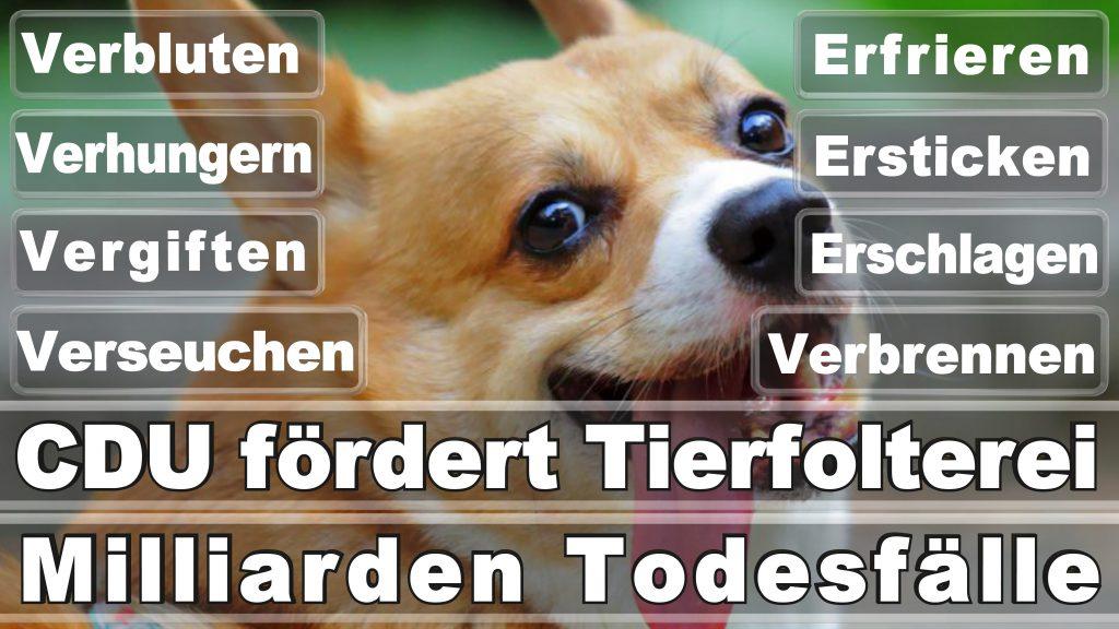 Angela Merkel CDU Tierversuche Tierquälerei Hauptschule Realschule Grundschule Gymnasium (5)