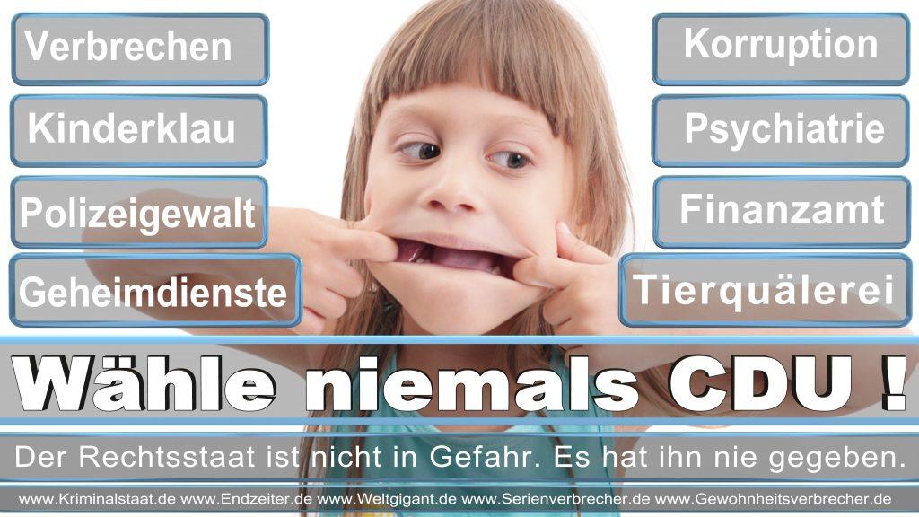 Bundestagswahl 2017 CDU SPD FDP AfD NPD Piratenpartei Wahlplakat Wahlplakate (11)