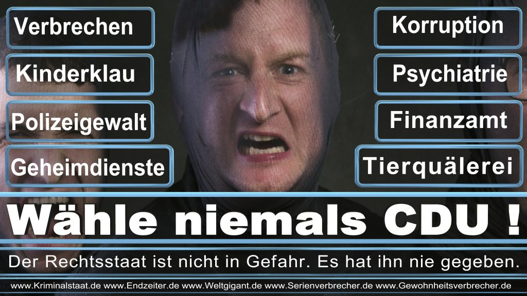 Bundestagswahl 2017 CDU SPD FDP AfD NPD Piratenpartei Wahlplakat Wahlplakate (13)