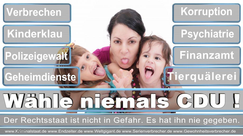 Bundestagswahl 2017 CDU SPD FDP AfD NPD Piratenpartei Wahlplakat Wahlplakate (9)