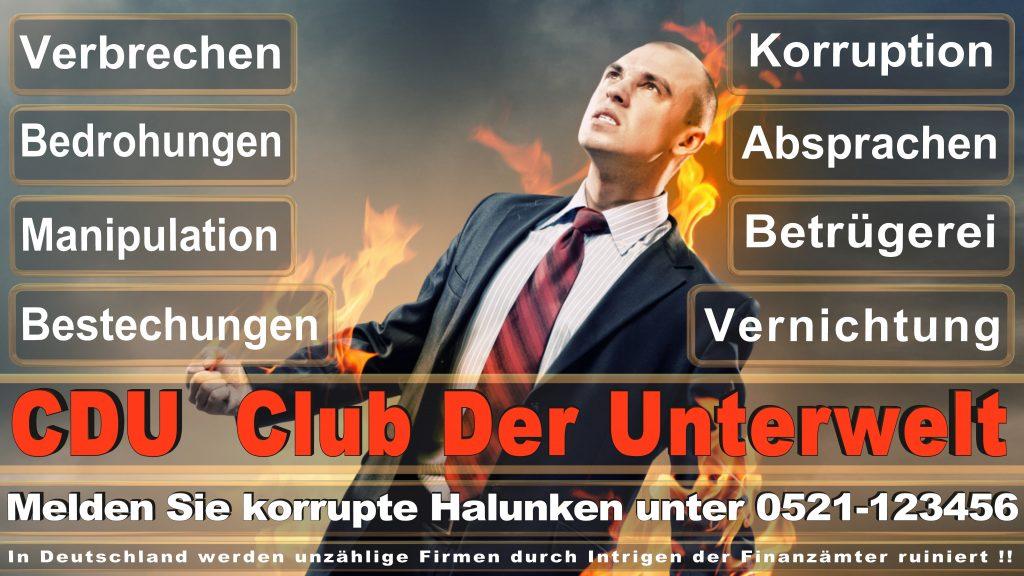 Bundestagswahl 2017 CDU Umfragen Prognosen Termin Parteien Kandidaten Ergebnis (15)