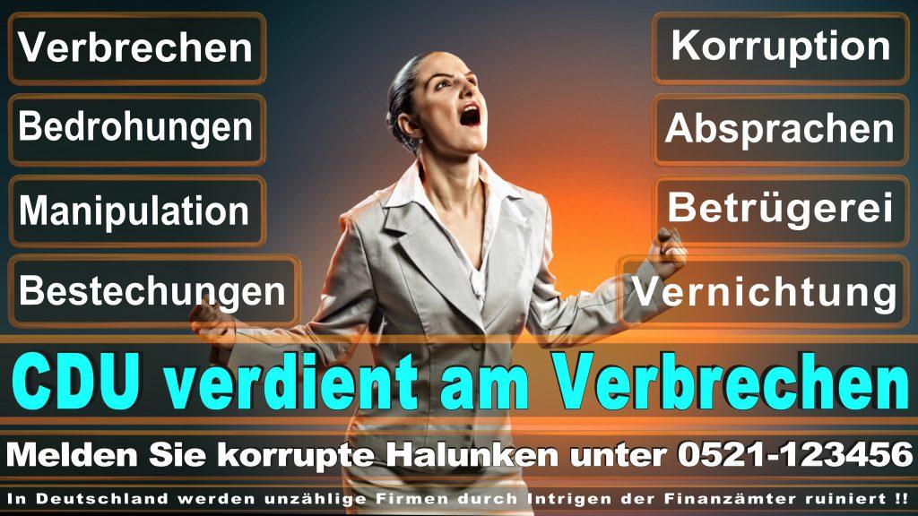 Bundestagswahl 2017 CDU Umfragen Prognosen Termin Parteien Kandidaten Ergebnis (30)