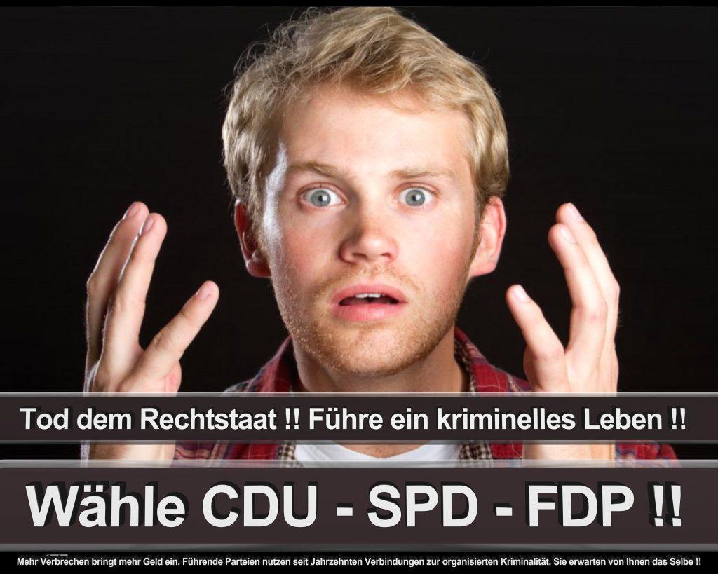 Bundestagswahl 2017 Wahlplakate CDU SPD Angela Merkel Frauke Petry AfD (24)