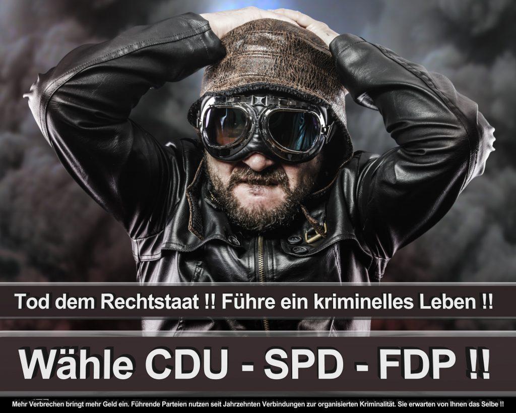 Bundestagswahl 2017 Wahlplakate CDU SPD Angela Merkel Frauke Petry AfD (33)