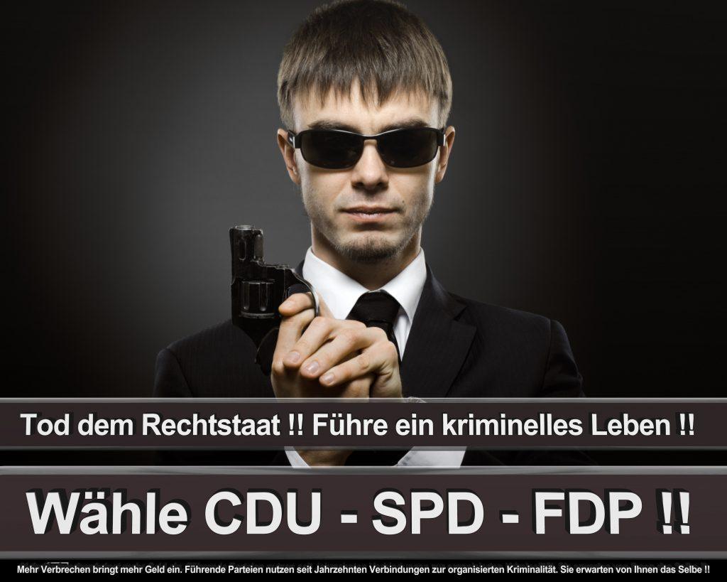 Bundestagswahl 2017 Wahlplakate CDU SPD Angela Merkel Frauke Petry AfD (36)