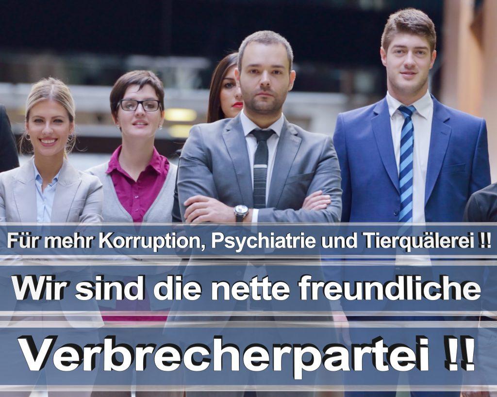 Bundestagswahl 2017 Wahlplakate CDU SPD Angela Merkel Frauke Petry AfD RTL ZDF ARD ARTE (10)