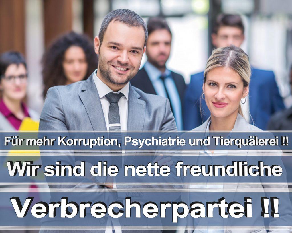 Bundestagswahl 2017 Wahlplakate CDU SPD Angela Merkel Frauke Petry AfD RTL ZDF ARD ARTE (9)