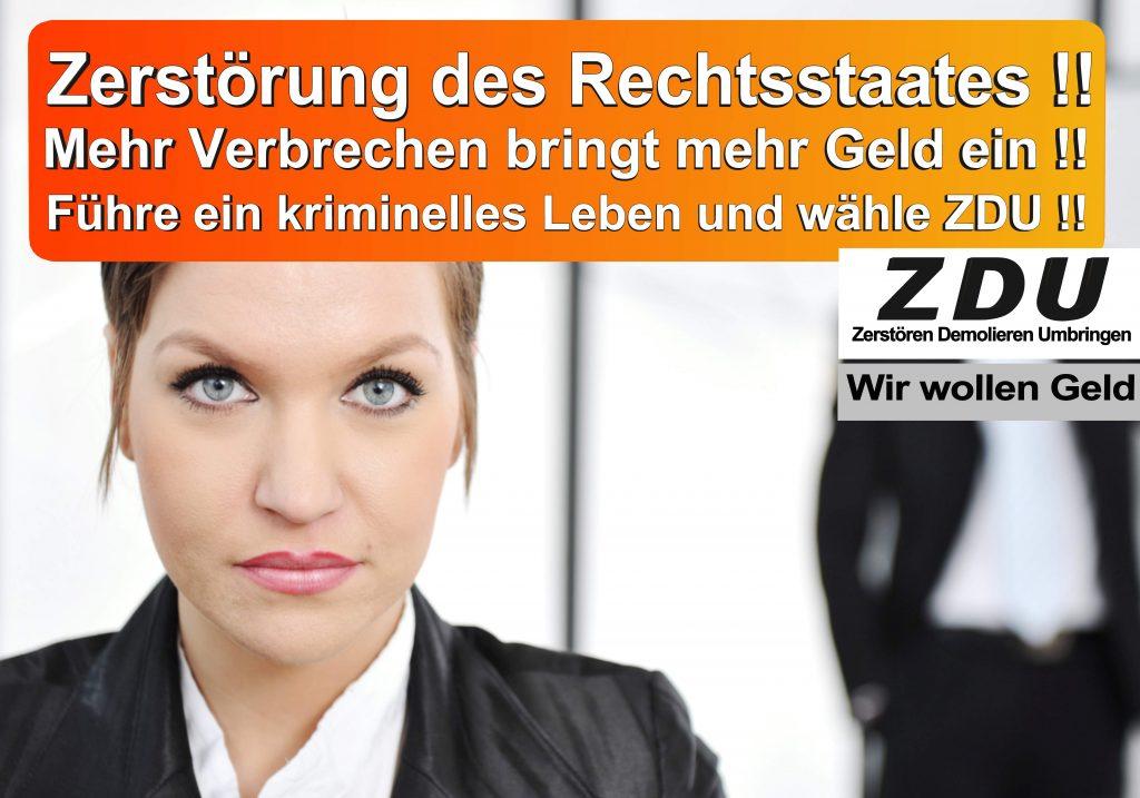 Bundestagswahl 2017 CDU SPD AfD Wahlplakat Bundestagswahl 2017 Umfrage Stimmzettel Angela Merkel CDU CSU (19)