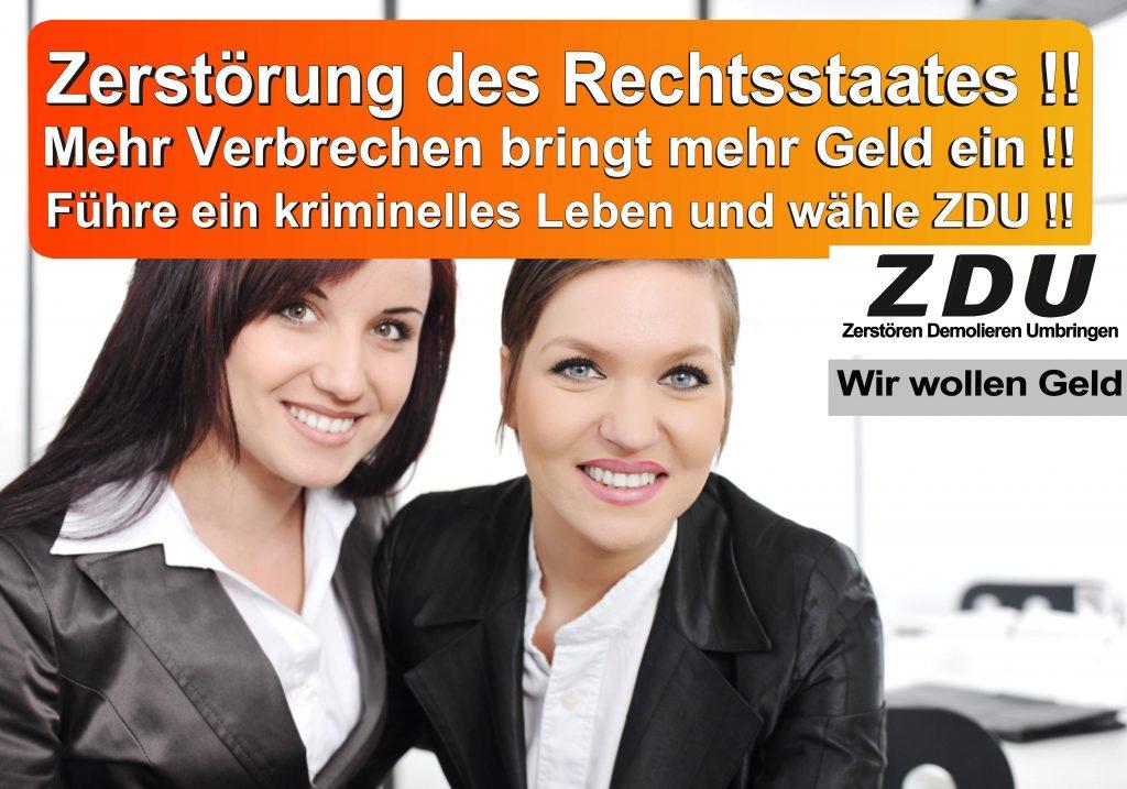 Bundestagswahl 2017 CDU SPD AfD Wahlplakat Bundestagswahl 2017 Umfrage Stimmzettel Angela Merkel CDU CSU (23)
