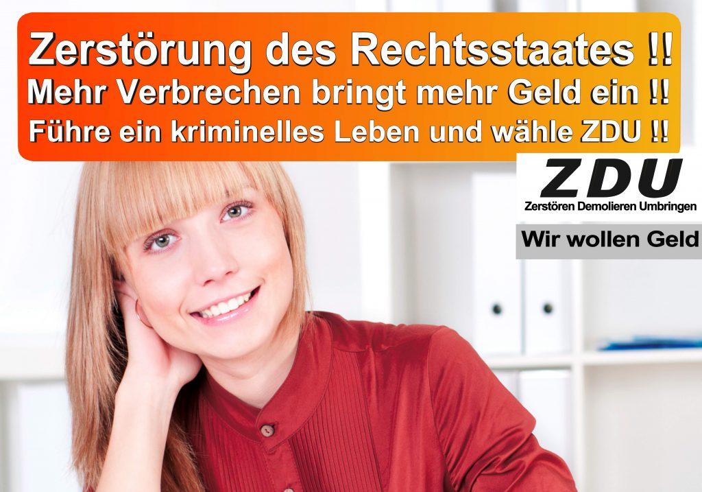 Bundestagswahl 2017 CDU SPD AfD Wahlplakat Bundestagswahl 2017 Umfrage Stimmzettel Angela Merkel CDU CSU (24)