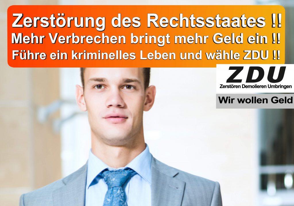 Bundestagswahl 2017 CDU SPD AfD Wahlplakat Bundestagswahl 2017 Umfrage Stimmzettel Angela Merkel CDU CSU (5)