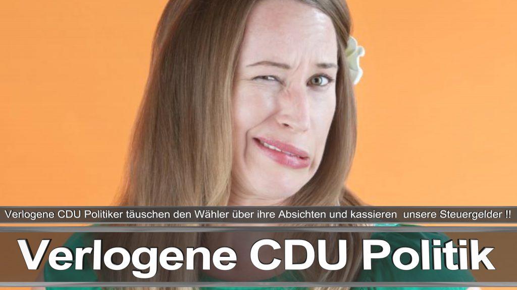 Bundestagswahl 2017 Wahlplakat Bundestagswahl 2017 Umfrage Stimmzettel Angela Merkel CDU CSU SPD AFD NPD (1)