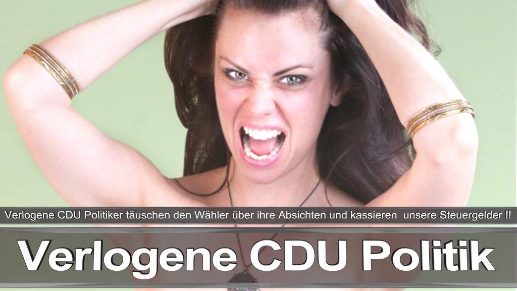 Bundestagswahl 2017 Wahlplakat Bundestagswahl, 2017, Umfrage, Stimmzettel, Angela Merkel CDU CSU SPD AFD NPD (11)
