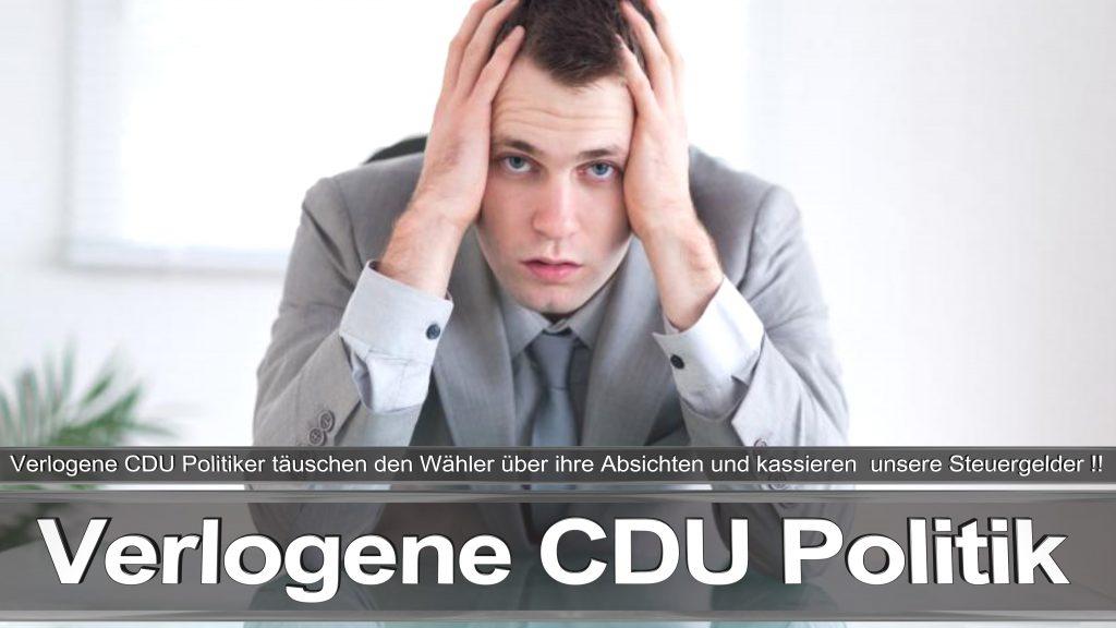 Bundestagswahl 2017 Wahlplakat Angela Merkel CDU CSU SPD AFD NPD (14)