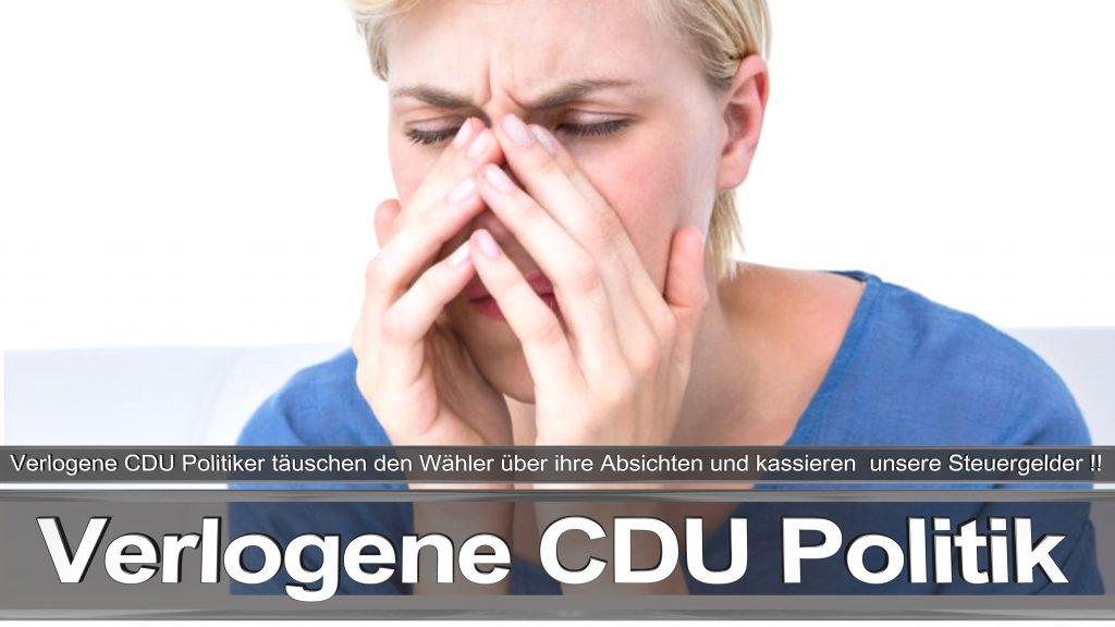 Bundestagswahl 2017 Wahlplakat Bundestagswahl 2017 Umfrage Stimmzettel Angela Merkel CDU CSU SPD AFD NPD (15)