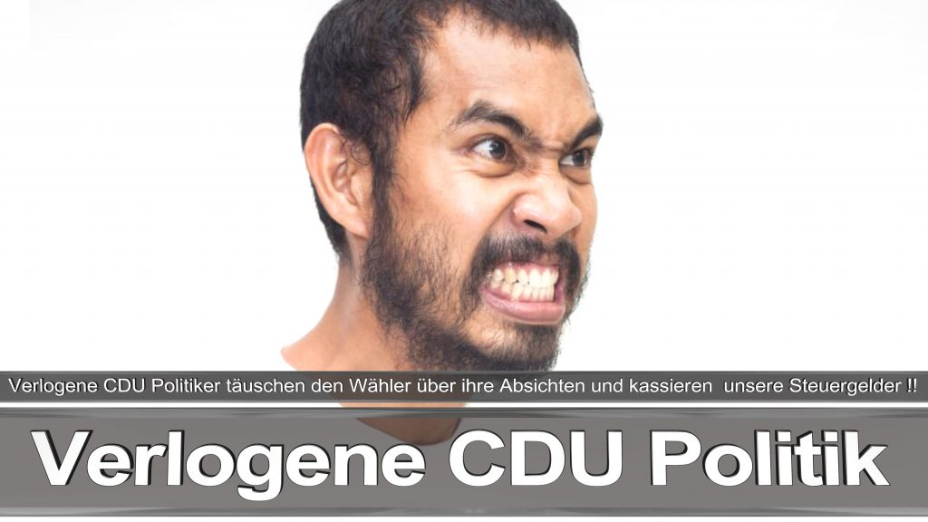 Bundestagswahl 2017 Wahlplakat Angela Merkel CDU CSU SPD AFD NPD (21)