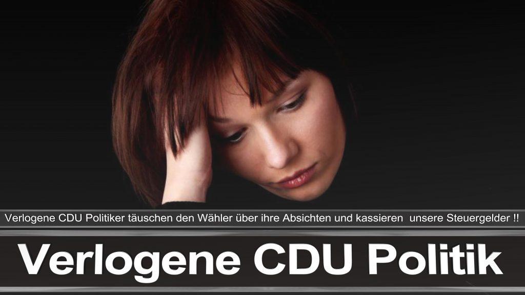 Bundestagswahl 2017 Wahlplakat Angela Merkel CDU CSU SPD AFD NPD (25)