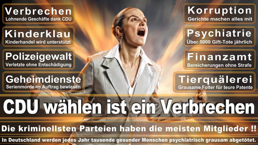 CDU Wahlplakate 2017 Angela Merkel Kundgebung Interview Europawahl CDU SPD FDP AFD NPD (16)