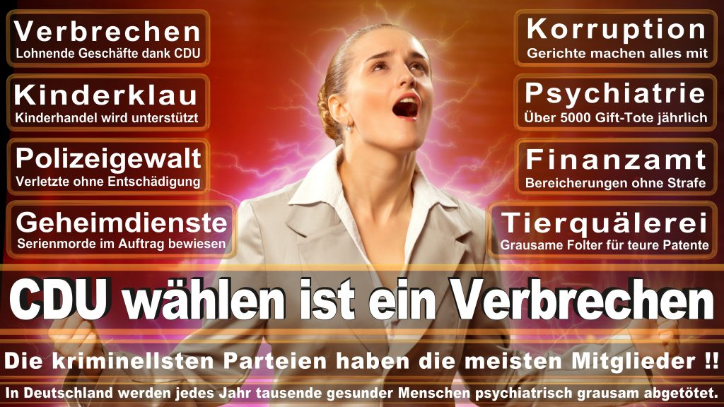 CDU Wahlplakate 2017 Angela Merkel Kundgebung Interview Europawahl CDU SPD FDP AFD NPD (18)