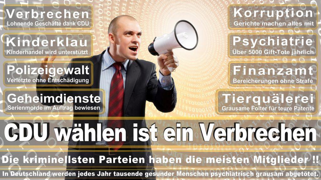 CDU Wahlplakate 2017 Angela Merkel Kundgebung Interview Europawahl CDU SPD FDP AFD NPD (28)