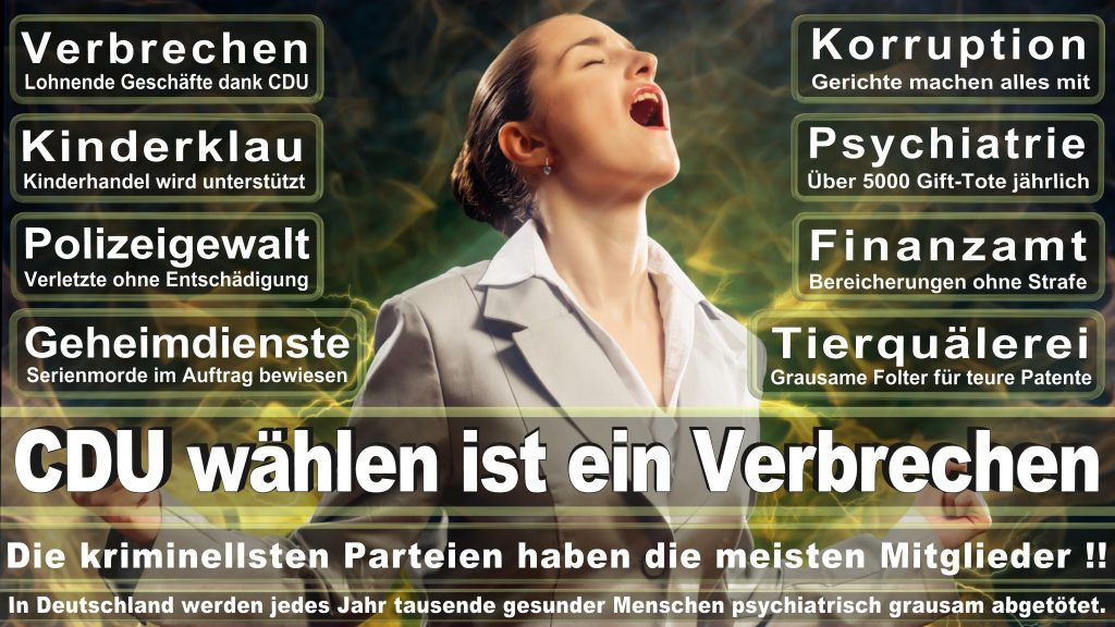 CDU Wahlplakate 2017 Angela Merkel Kundgebung Interview Europawahl CDU SPD FDP AFD NPD (4)