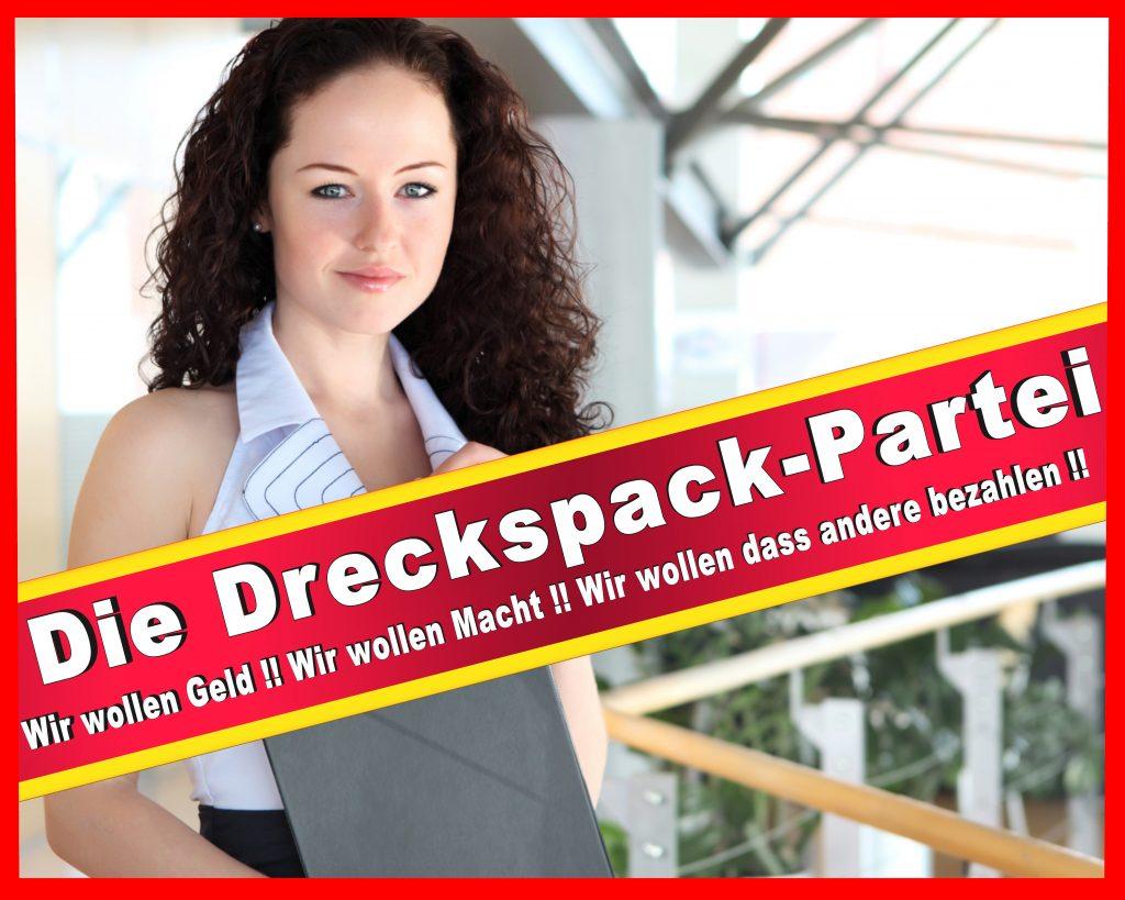 Wahlplakate 2016 2017 2011 Wesselmann Wesselmänner CDU SPD FDP Stimmzettel (14)