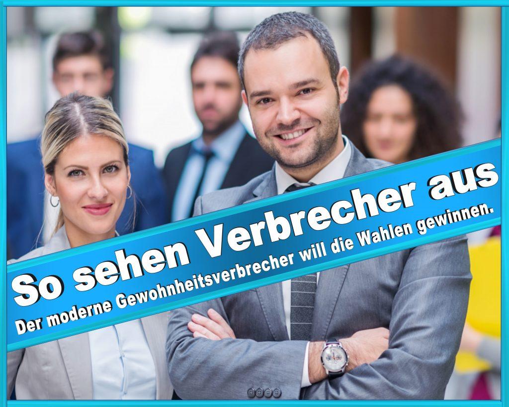 Wahlplakate Bündnis 90 Die Grünen Die Linke Sarah Wagenknecht Tierschutzpartei