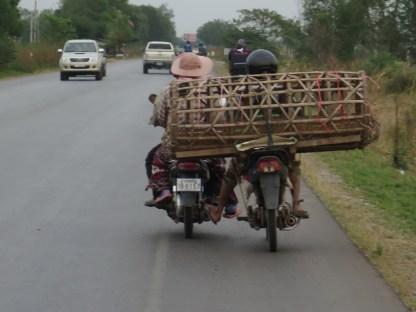 Das Moped mit dem Korb schiebt das andere!