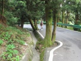 Taoistische Straßenführung